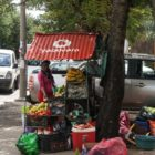 Fruit and vegetable in street in Maputo