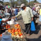 Man buying tomatoes at outdoor fruit and vegetable market