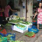 Women working in outdoor vegetable shop
